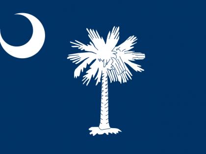 Declaration of the Provincial Congress of South Carolina to the Governour (June 20, 1775)